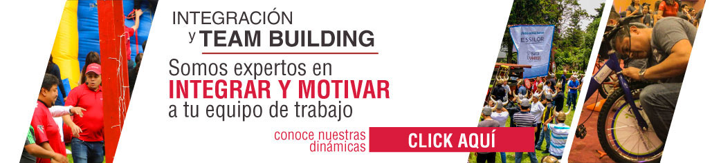 Dinámicas de Integración y Team Building